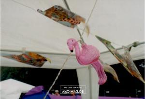 Appletree Garden Festival - Analog